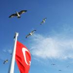 ciekawostki_o_turcji2