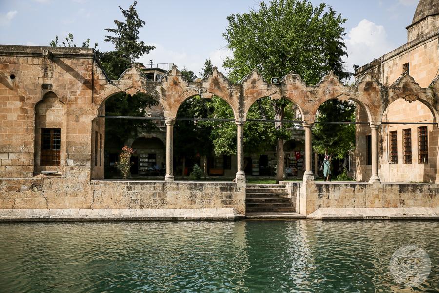 Czwartek 8891 Şanlıurfa   z wizytą w mistycznej Jerozolimie Anatolii
