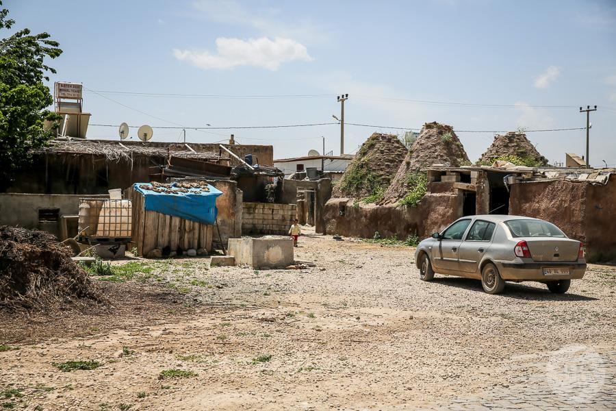 Piatek 9141 Starożytny Harran i niezwykłe domy ule [południowo wschodnia Turcja]