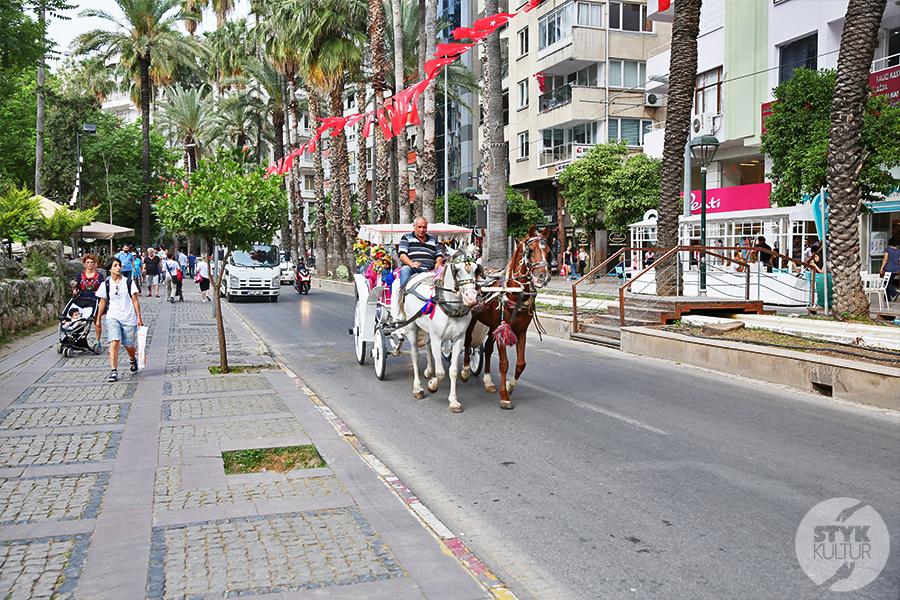 Antalya 2 Pogoda w Turcji   ilu stopni można spodziewać się w grudniu oraz styczniu? ⛅?