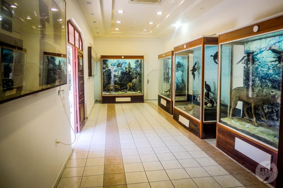 Rodos Grecja 230 Największe atrakcje Rodos: Petaloudes   Dolina Motyli