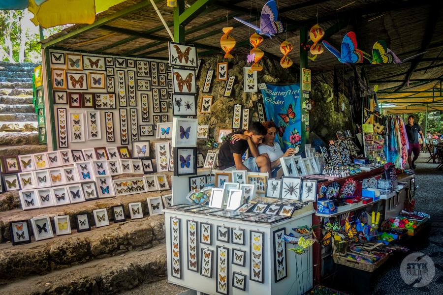 Rodos Grecja 241 Największe atrakcje Rodos: Petaloudes   Dolina Motyli