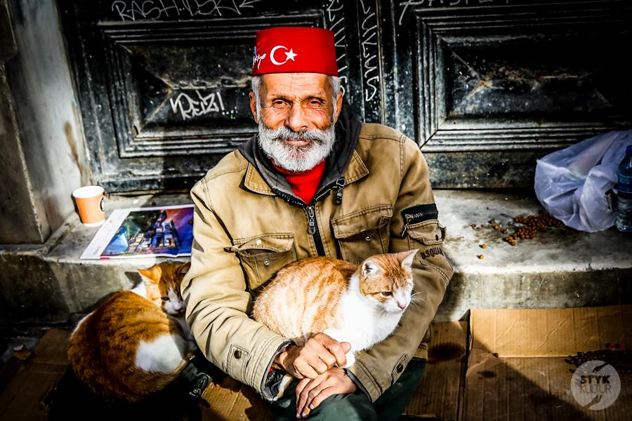Koty w Turcji6 2 Dlaczego w Turcji jest tyle kotów?  O kotach w Stambule (i nie tylko)