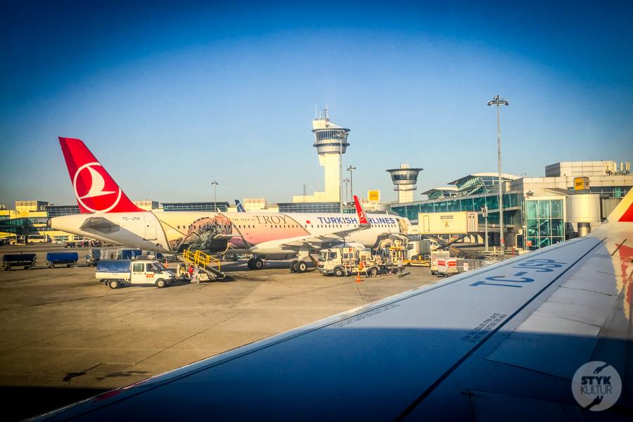 Turkish 2 of 1 Tureckie linie Turkish Airlines planują wznowienie lotów