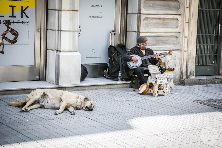Beyoglu 3 of 4 1 Beyoğlu   handlowa dzielnica Stambułu