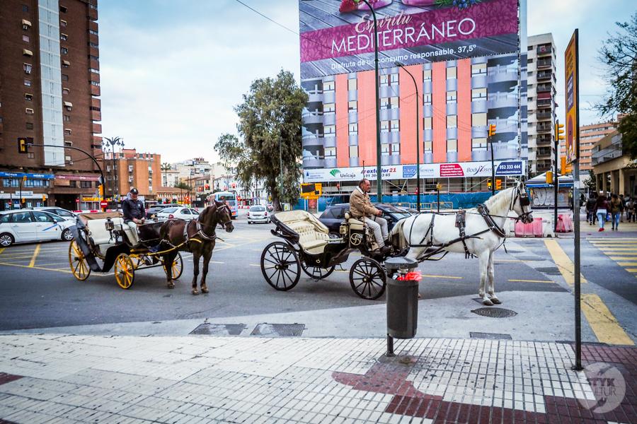 Malaga Hiszpania 3 Co warto zobaczyć w Maladze? 9 największych atrakcji hiszpańskiego miasta