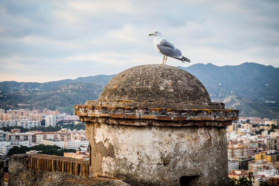 Malaga Hiszpania 41 Co warto zobaczyć w Maladze? 9 największych atrakcji hiszpańskiego miasta