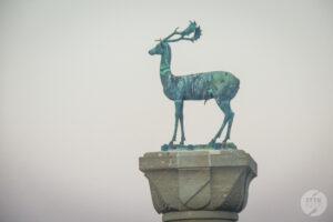 Rodos jelen 4 300x200 Co warto zobaczyć w mieście Rodos? 12 najpopularniejszych atrakcji stolicy greckiej wyspy