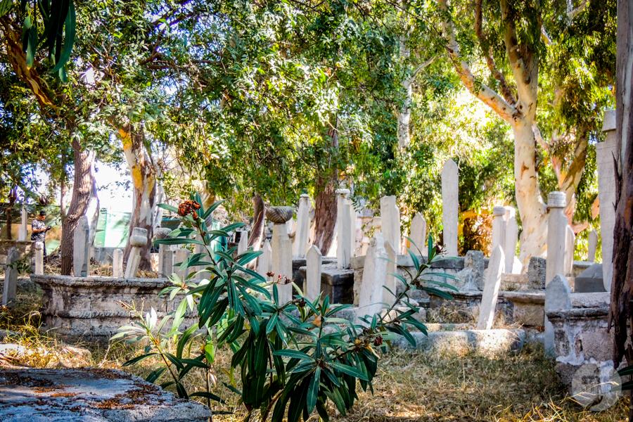 Rodos port4 20 Co warto zobaczyć w mieście Rodos? 12 najpopularniejszych atrakcji stolicy greckiej wyspy