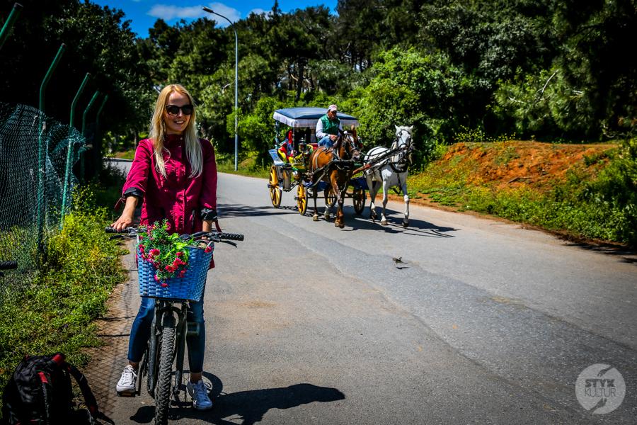 Buyukada 2018 1 of 4 Popularne dorożki konne zniknęły z krajobrazu Wysp Książęcych. Nareszcie!