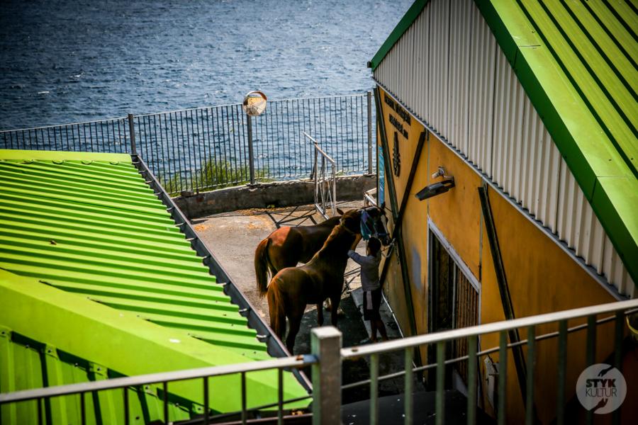Buyukada 2020 6 of 12 Popularne dorożki konne zniknęły z krajobrazu Wysp Książęcych. Nareszcie!