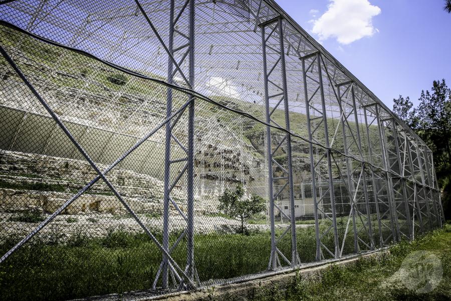 Birecik 5 of 1 Ośrodek Lęgowy Ibisa Grzywiastego w Birecik (południowo wschodnia Turcja)