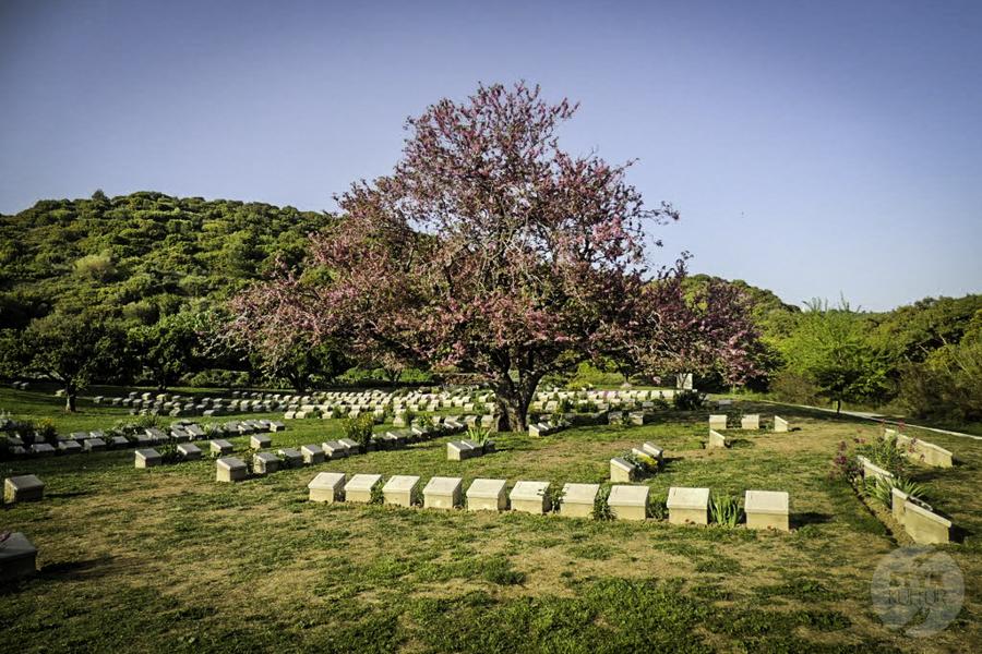 BitwaGalipoli 8 of 13 Bitwa o Gallipoli, bohaterski osmański siłacz i klęska Winstona Churchilla