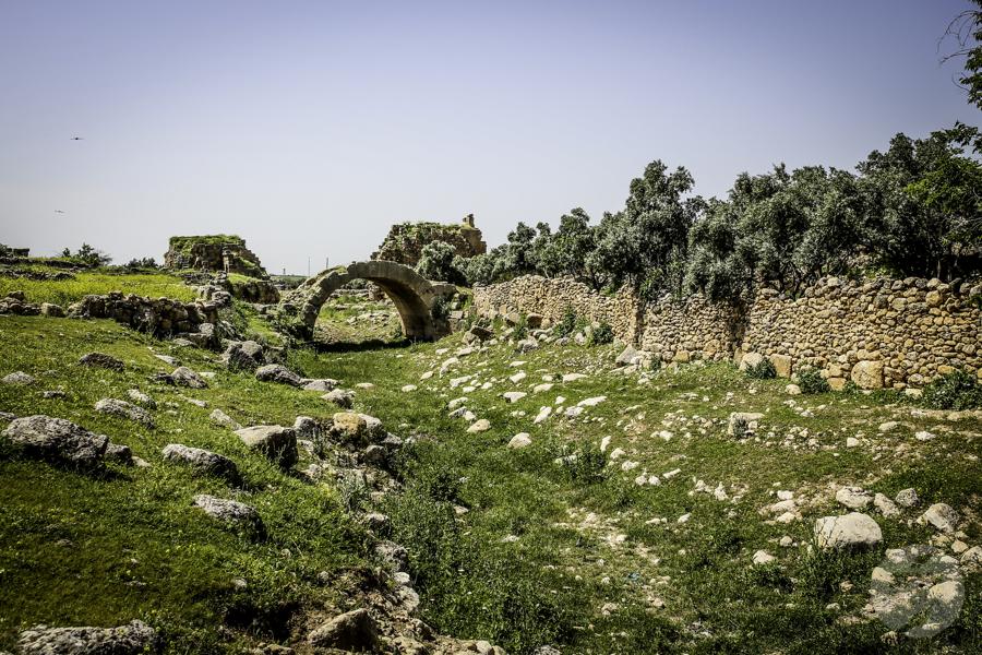 Dara Turcja 13 Niezwykłe odkrycia archeologów w tureckiej Darze, zaledwie 10 km od granicy z Syrią