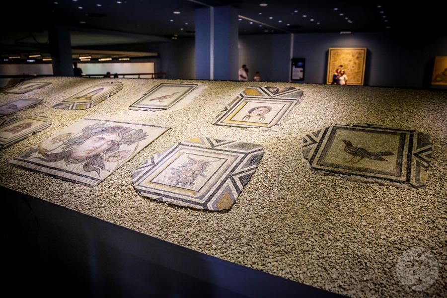 Muzeum Mozaiki Zeugma 20 of 33 Muzeum Mozaiki Zeugma w Gaziantep
