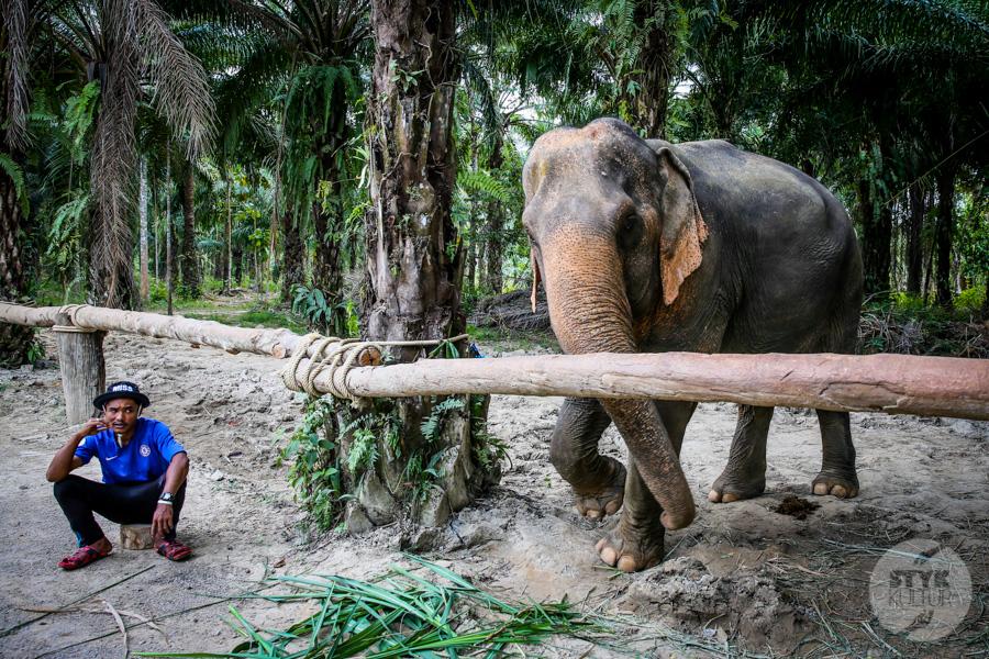 Tajlandia22 3 of 1 15 rzeczy, o których warto wiedzieć przed wylotem do Tajlandii ?